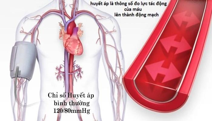 Huyết Áp Của Người Bình Thường Và Những Điều Cần Quan Tâm