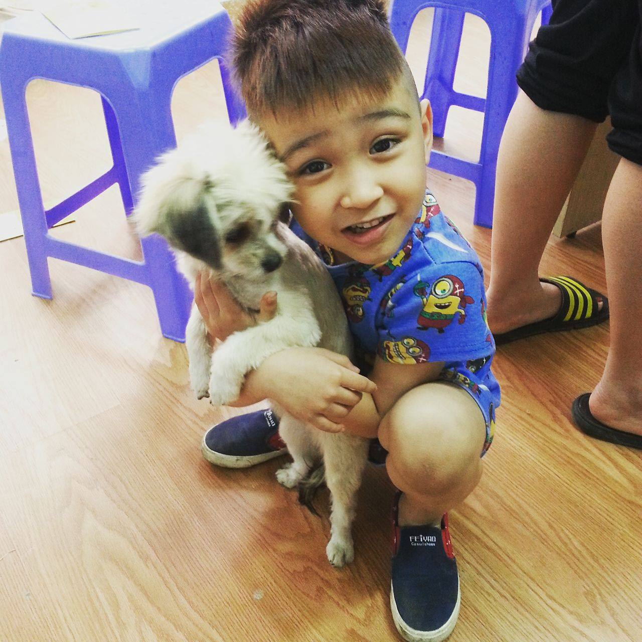 Thư cảm ơn chương trình Petcity - Care your pet