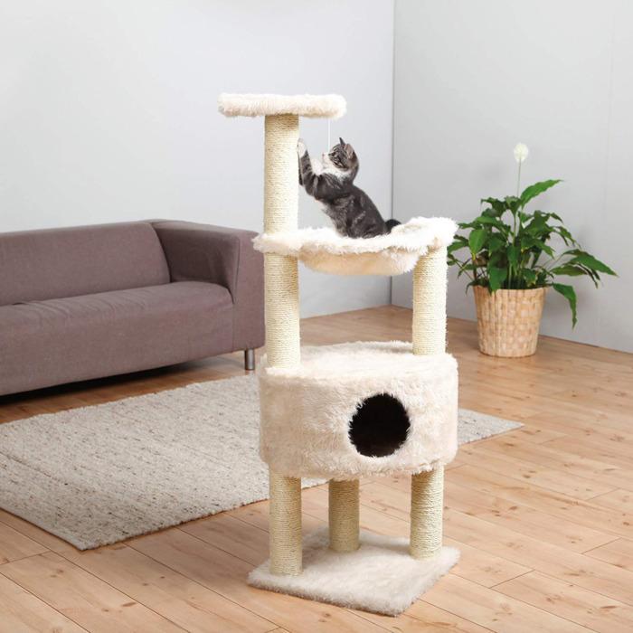 4 món đồ chơi cho mèo đơn giản nhưng nhiều lợi ích