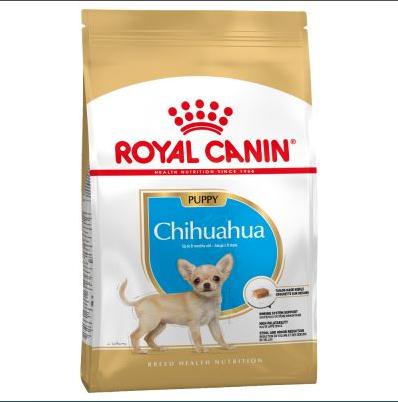 Thức ăn cho chó Chihuahua tốt nhất hiện nay