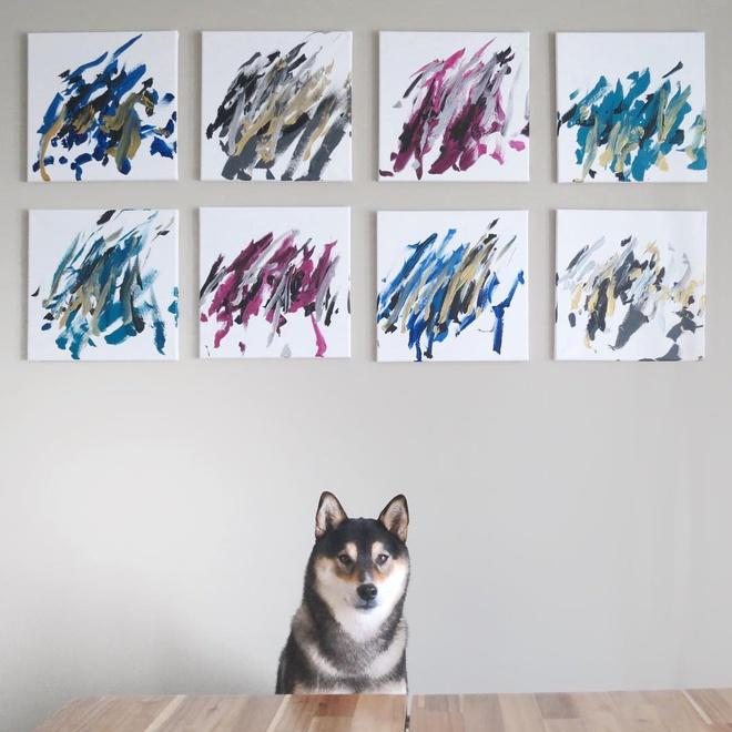 Chú chó Shiba có Instagram riêng, kiếm ra tiền nhờ tài vẽ tranh