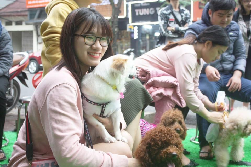 Offline Poodle Meeting
