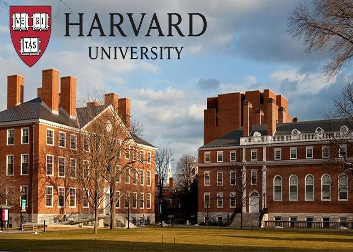 Những điều (ngay cả) Harvard cũng không dạy bạn