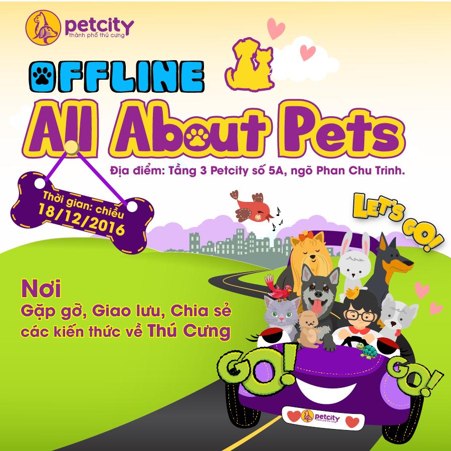 ALL ABOUT PETS #1 - Những điều cần biết khi nuôi mèo