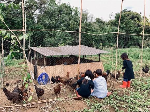Lý Hải đưa cả gia đình về trang trại ở quê tránh dịch