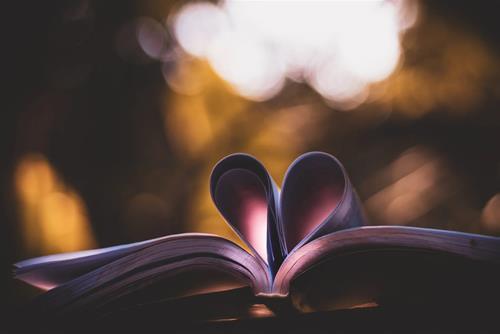 Tử vi hôm nay 24/10/2020 về tình yêu của 12 con giáp: Hạnh phúc về tay ai?